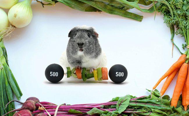 Na talerzu i na macie – warsztaty zdrowego odżywiania i ruchu